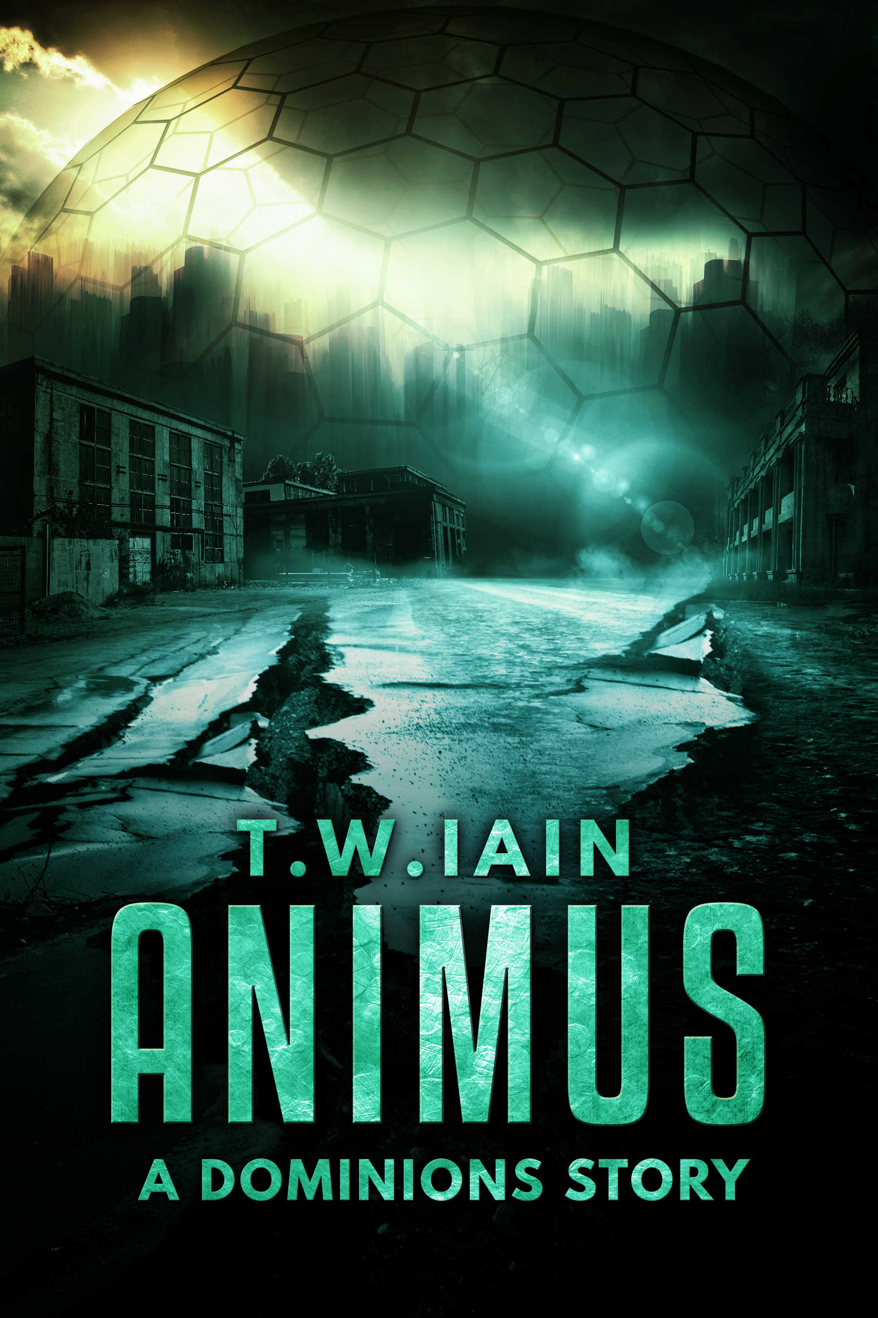 Animus (A Dominions Story)