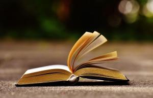 book-1738609_1280